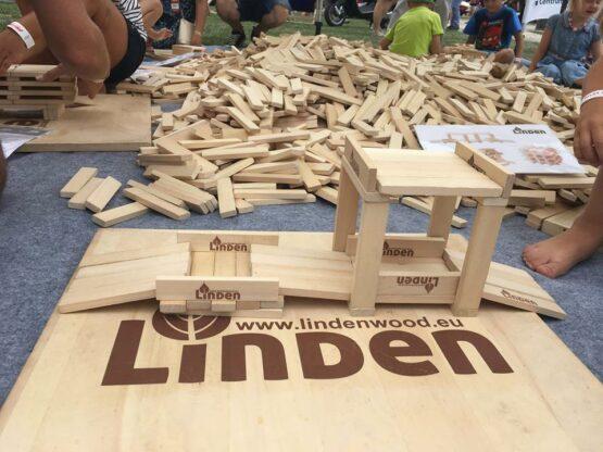 59 555x416 - Zdjęcia z eventów z klockami Linden