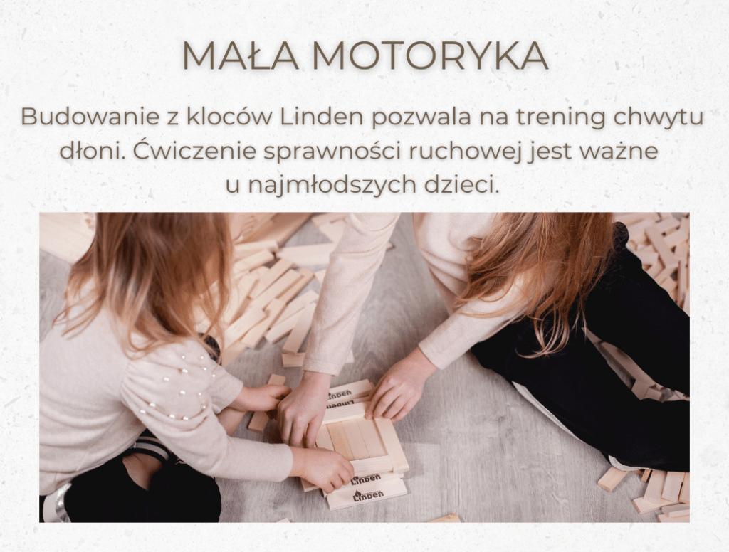 umiejetnosci_klocki_linden_4