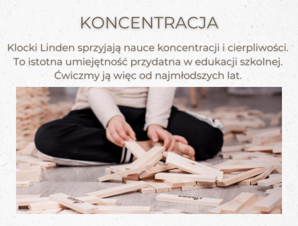 umiejetnosci_klocki_linden_5